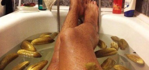 Des jambes, des cornichons, et des poils...